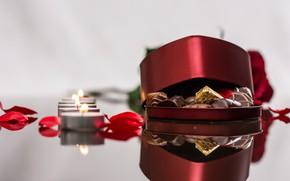 Картинка праздник, коробка, подарок, розы, букет, лепестки, шоколадные конфеты