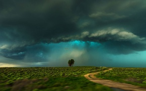 Картинка поле, тучи, дерево, буря, Колорадо, США, Ламар