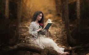 Картинка лес, девушка, роза, книга, чтение, Carmen Gabaldon