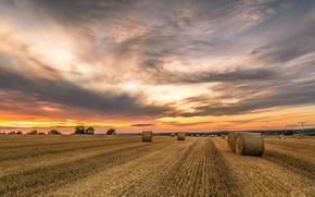 Картинка поле, закат, сено