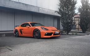 Картинка авто, Porsche, Cayman, Orange, TechArt
