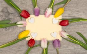 Картинка цветы, сердце, colorful, сердечки, тюльпаны, love, heart, flowers, romantic, tulips, spring