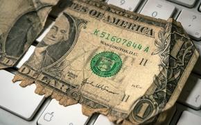 Картинка макро, деньги, Last Dollar