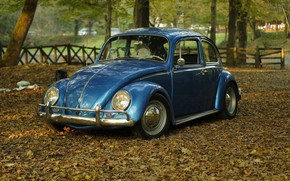 Картинка car, Volkswagen, vintage, blue