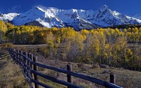 Картинка Горы, Осень, Лес