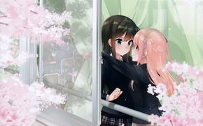 Картинка весна, окно, класс, школьницы, подруги, смущение, цветение весной, ветки дерева, by Koruni