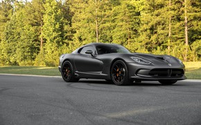 Обои Dodge, Viper, GTS, Road, Forest