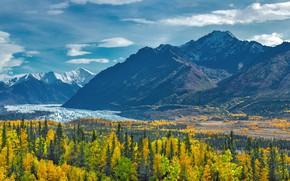 Картинка деревья, пейзаж, горы, природа, озеро