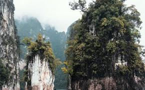 Картинка море, деревья, природа, скалы, таиланд