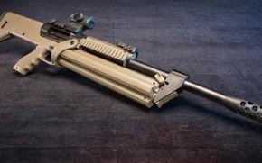 Картинка оружие, дробовик, weapon, shotgun, SRM 1216, СРМ 1216