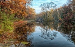 Картинка осень, пейзаж, природа