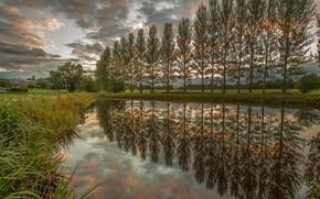 Картинка пейзаж, природа, река, красота