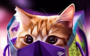 Обои кот, by Khushiart, пакет, кошка