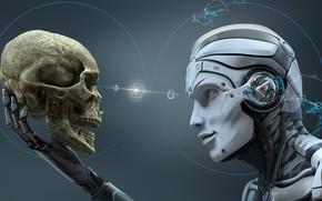 Обои skull, robot, head