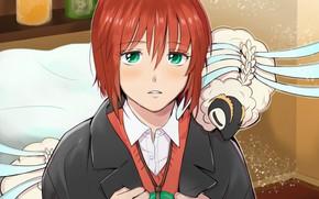 Картинка взгляд, девушка, аниме, арт, зверёк, Mahou Tsukai no Yome, Невеста чародея, Hatori Chise