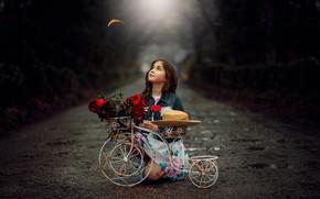Обои road, child, girl, дорога, bike, ребенок, flowers, велосипед, цветы, девочка