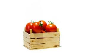 Картинка ящик, помидор, томаты