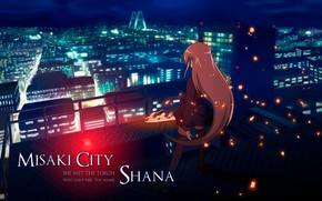Картинка огненный туман, shakugan no shana, shana, sity