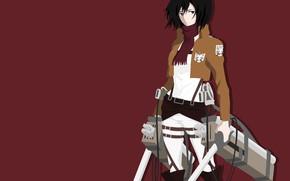 Картинка sword, game, weapon, anime, survivor, ken, blade, manga, japanese, bishojo, Shingeki no Kyojin, Mikasa Ackerman, …