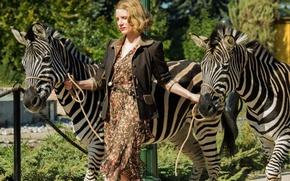 Картинка cinema, movie, film, zebra, Jessica Chastain, The Zookeeper's Wife
