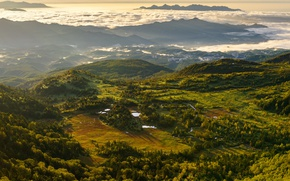 Обои облака, рассвет, зелень, панорама, деревья, туман, горы, вид сверху, утро, Швейцария