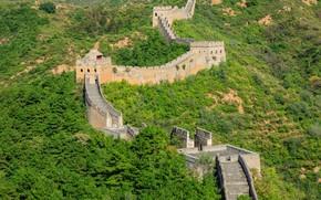 Картинка зелень, лес, солнце, деревья, Китай, кусты, Великая Китайская стена, The great wall of China