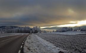 Картинка дорога, поле, вечер, серебренный свет