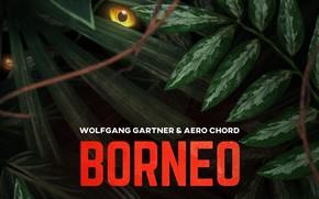 Картинка Music, Borneo, Cover, Monstercat, Wolfgang Gartner & Aero Chord