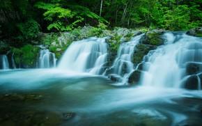 Картинка лес, лето, вода, деревья, ветки, камни, водопад, поток, каскад, водоем