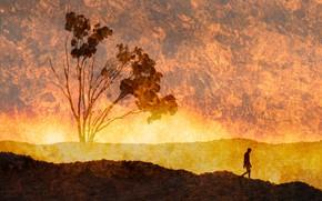 Картинка фантазия, дерево, силуэт, Feeling the Heat