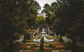 Картинка цветы, парк, мрак, скульптуры