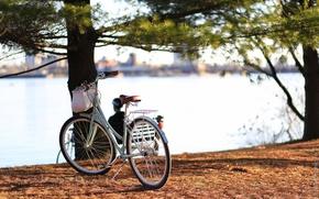 Картинка велосипед, город, река, Канада, Онтарио, Canada, bicycle, Ontario, cruiser, Quebec, Квебек, Ottawa, круизер, Оттава