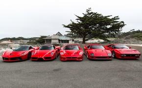 Обои Ferrari, F40, Enzo, Italia, RED, F50, LaFerrari, 288 GTO