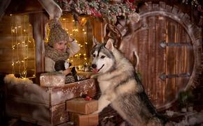 Картинка радость, праздник, новый год, собака, мальчик