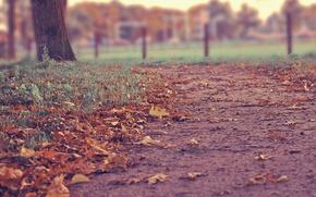 Картинка дорога, осень, листья, город, blur