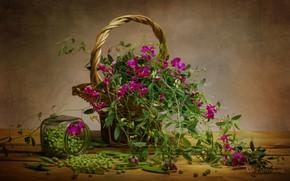 Картинка лето, ягода, натюрморт, цветы.