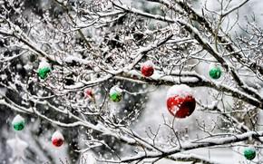 Обои зима, шарики, снег, украшения, деревья, сад, Новый Год, Рождество