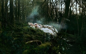 Картинка лес, девушка, цветы, ситуация, спящая, Bella Kotak, A silent song