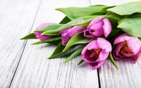 Картинка цветы, букет, тюльпаны, love, wood, flowers, romantic, tulips, purple
