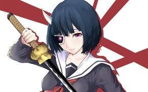Картинка sword, katana, ken, blade, mask, martial artist, japanese, bishojo, seifuku, horn, Armed Girl's Machiavellism, Busou …