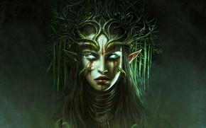 Обои девушка, лицо, портрет, Divinity: Original Sin 2