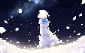 Картинка воротник, девочка, Млечный Путь, белые розы, лепестки роз, art, звездное небо, матроска, стоит спиной, lluluchwan