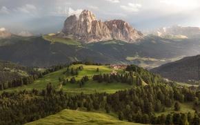 Картинка деревья, горы, Альпы, леса