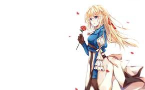 Обои девушка, роза, лепестки, Violet Evergarden