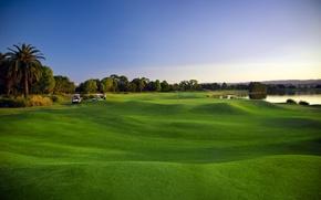 Обои зелень, поле, трава, деревья, пейзаж, озеро, пальмы, газон, гольф