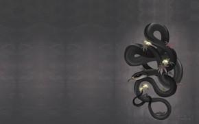 Картинка змея, ветка, арт, Black Mamba, мамба, FionaHsieh