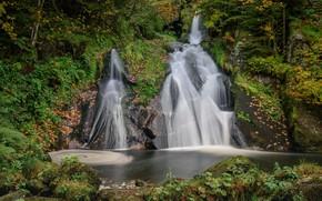 Картинка осень, лес, Германия, водопады, каскад, Germany, Баден-Вюртемберг, Baden-Württemberg, Black Forest, Шварцвальд, Twin Falls