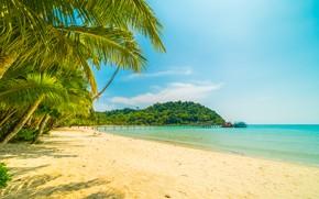 Картинка песок, море, волны, пляж, лето, небо, пальмы, берег, summer, beach, sea, seascape, beautiful, sand, paradise, ...