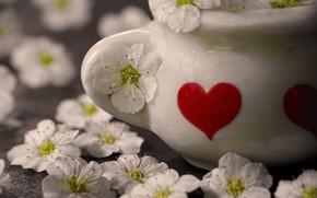 Картинка цветы, ваза, сердечко