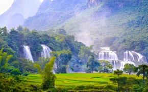 Картинка деревья, пейзаж, природа, водопады, леса